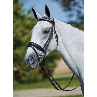 Kincade Crystal Checker Flash Bridle