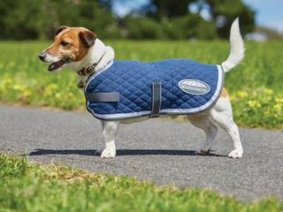Weatherbeeta Quilted Dog Rug
