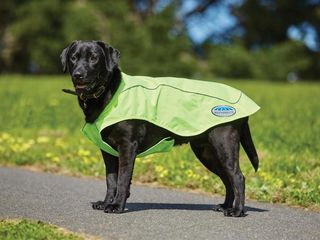 Weatherbeeta Reflective Exercise Dog Rug