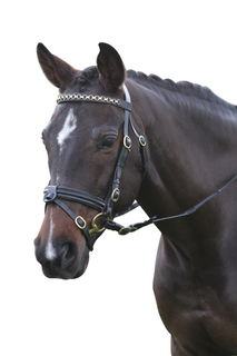Kincade Performance Bridle