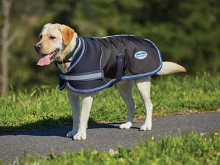 Parka 1680d Dog Coat
