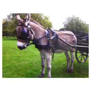 Tedex Driving Harness - Donkey