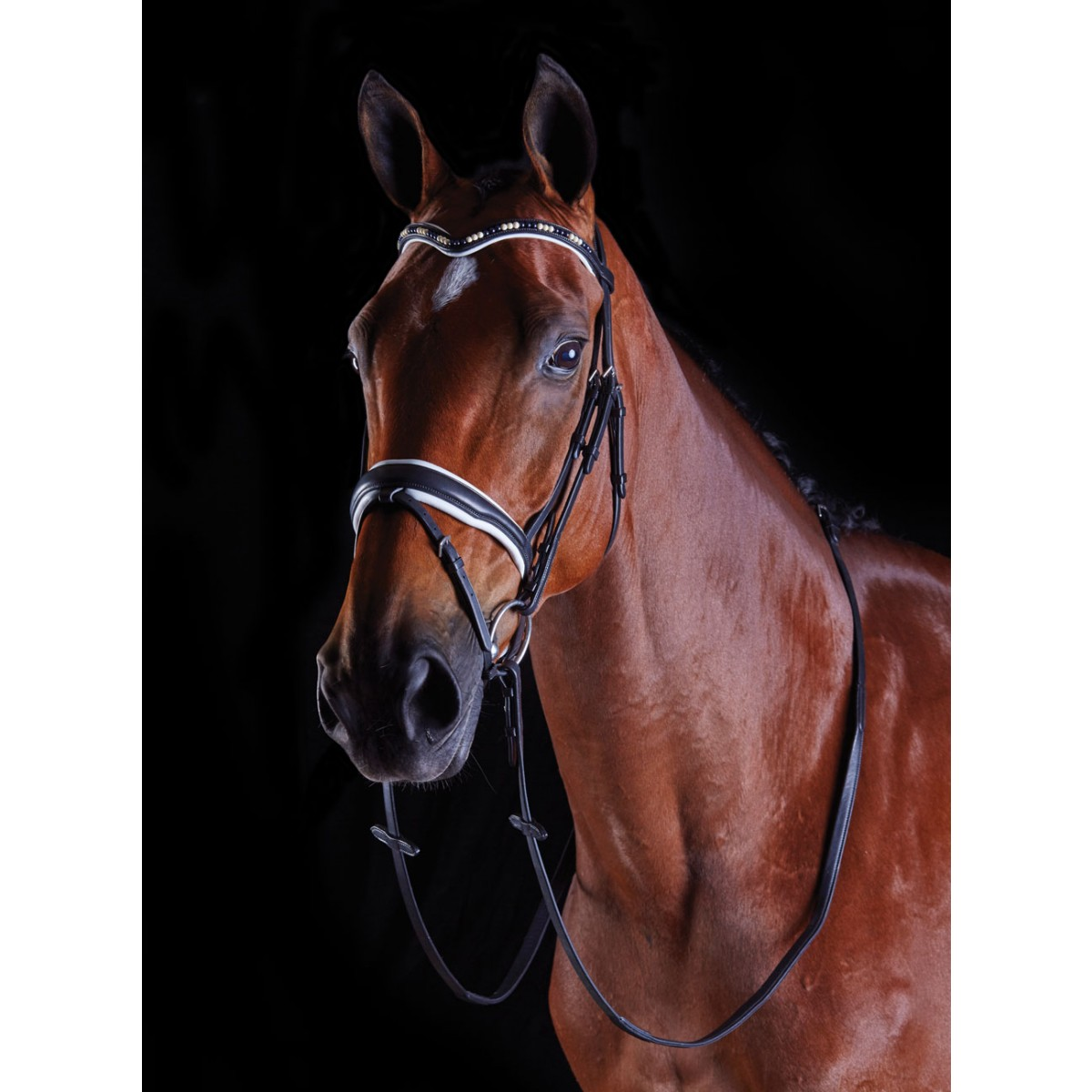 Collegiate Deep V Pearl Flash Bridle