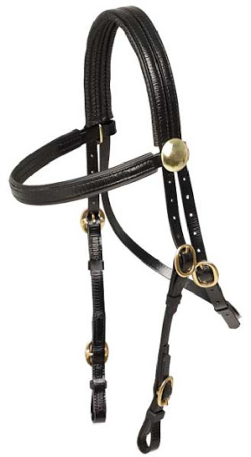 Race Bridle with Brass Buckles