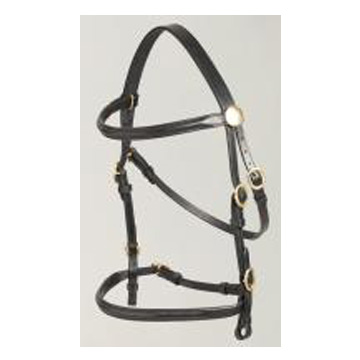 In-hand Bridle and Lead